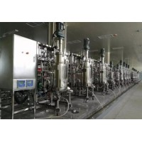 15L50L100L500L multi stage and multi trains fermentor system passed test