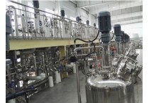 Large scale cell culture phermenters -Custom Fermenter Systems