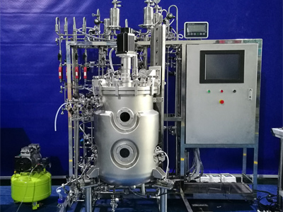 100L upper magnetic stirring Cell Culture Bioreactor