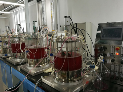 5L 7L 10L 30L 40L cell bioreactor (glass)