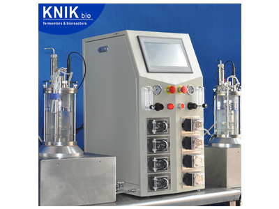 In-Situ Sterilizable glass Fermenter-bioreactor( bench top Magnetic Drive )