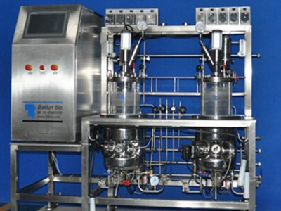 Two conjoined glass bioreactor (sterilization in situ)
